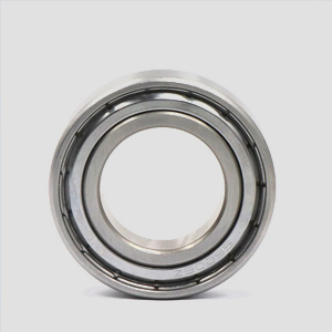 FAG S6009-2RSR-HLC  Stainless Steel Ball Bearings 45*75*16